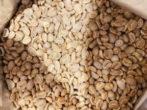 インドネシア スラウェシ ママサ 生豆